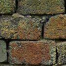 rough brick Old brickwork by mrivserg