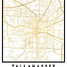 TALLAHASSEE FLORIDA CITY STREET MAP ART by deificusArt