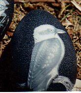 another Kookaburra by Ngarnamurrah