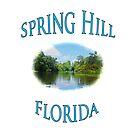 Spring Hill Florida by designingjudy