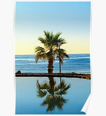 Sunrise on the beach in Spain and palms Poster