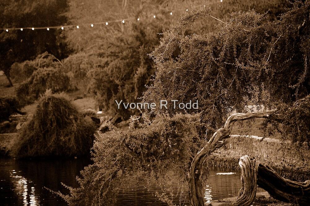 The Lake II by brwnsuga21