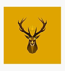 The crowned stag of House Baratheon Photographic Print