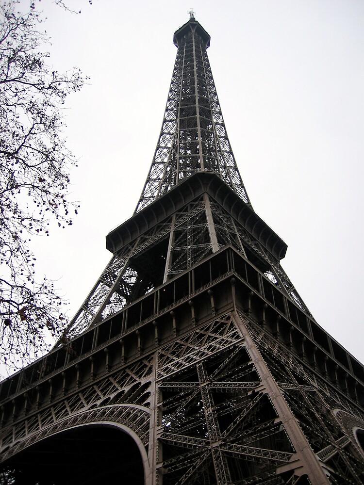 Eiffel Tower in Winter by Susan Badman