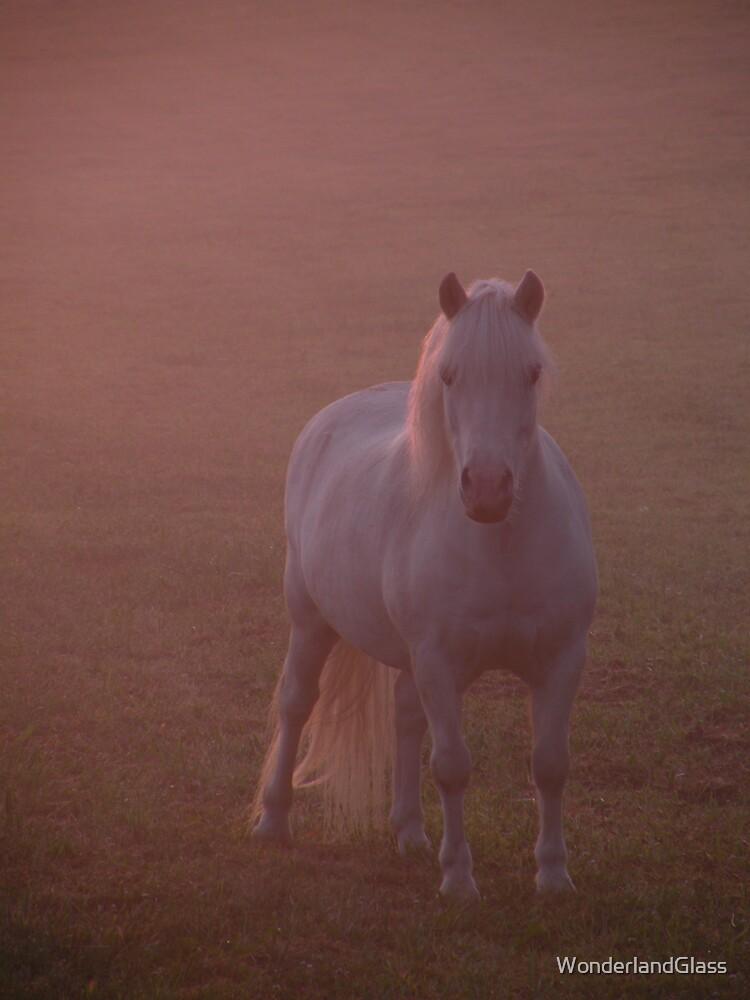 miniature horse/magic morning by WonderlandGlass