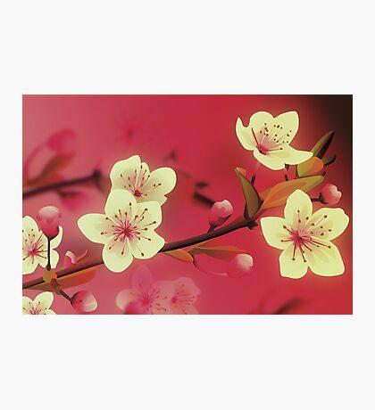Yoshie blossom pink Photographic Print