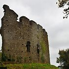 Restormel Castle, Outer Wall by lezvee