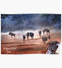 AFRICAN WINTER-SCAPE Poster