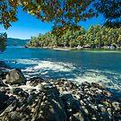 Boat Passage: Princess Margaret Marine Park by toby snelgrove  IPA