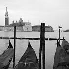 Waterfront, Venice Italy by VanOostrum