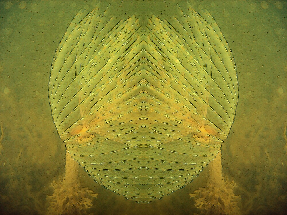 Alien by Fishbait
