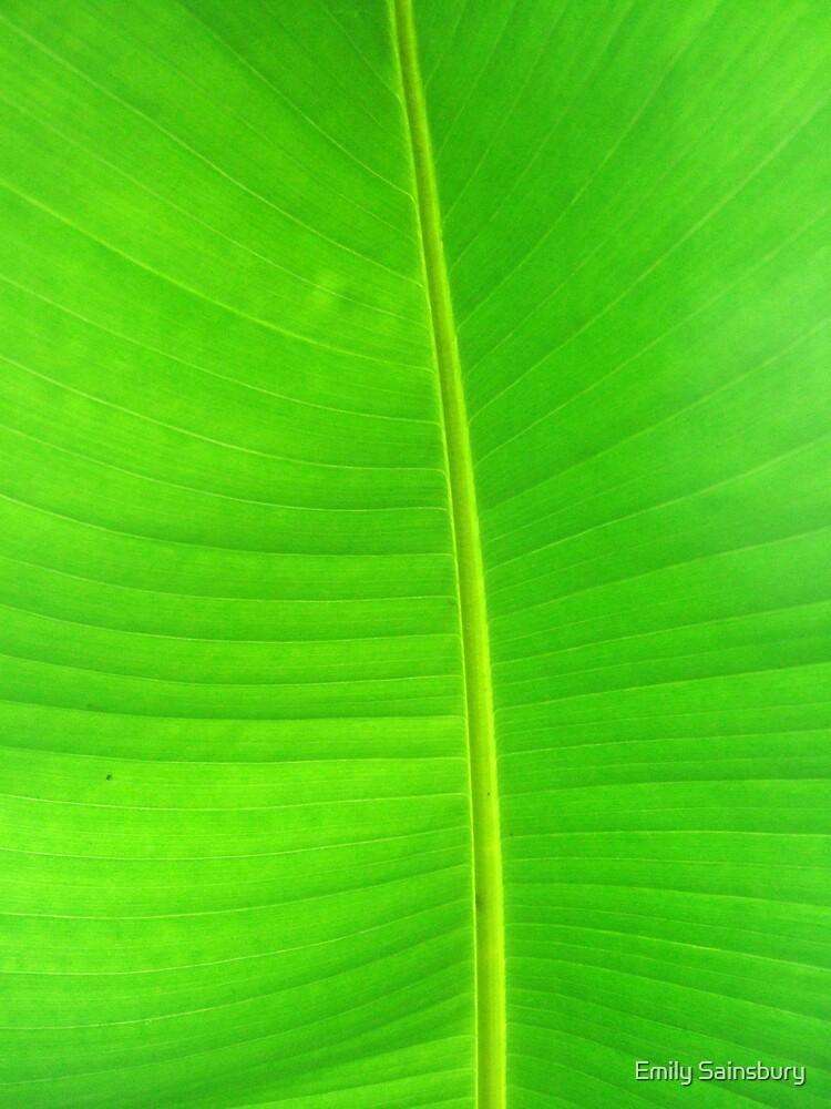 Vibrant Green Palm by Emily Sainsbury