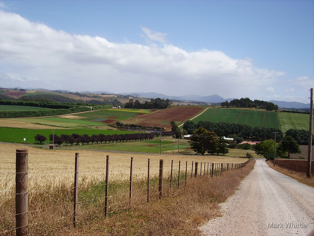 Rural Landscape by Mark Whittle