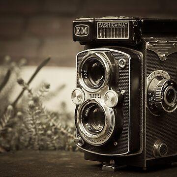 Old camera 1 by serbandeira