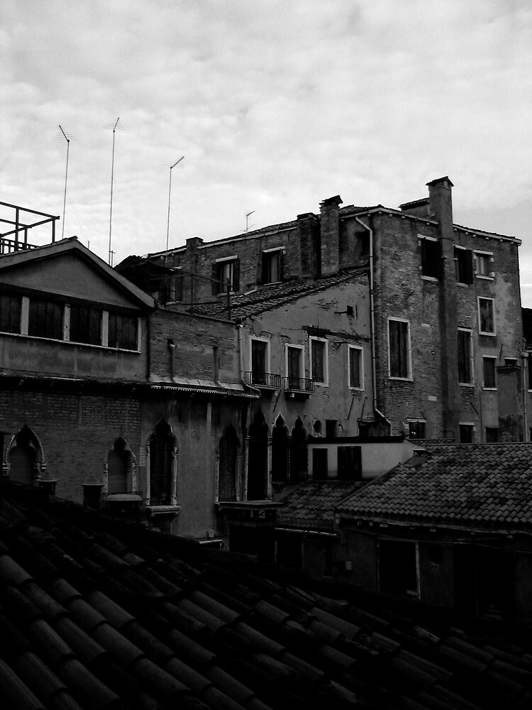 Venetian skyline by aine