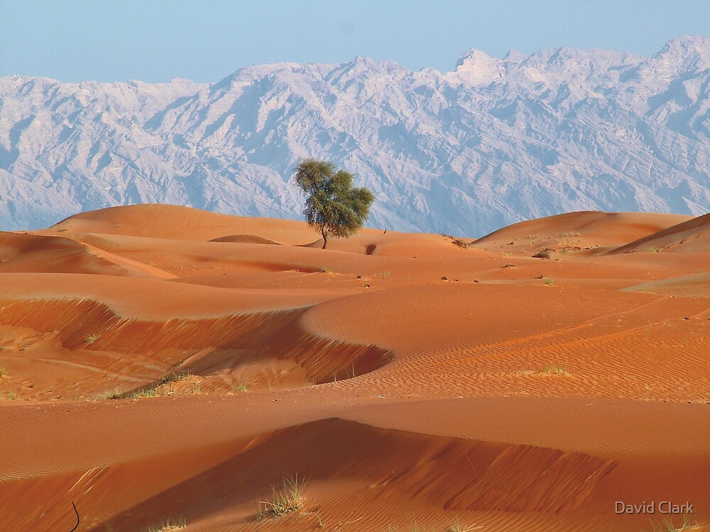 Red Dunes and Jabel  by David Clark