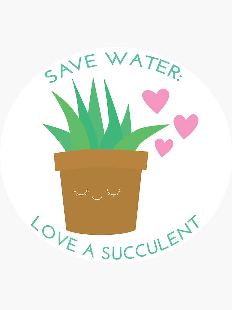 Save Water: Love a Suculent by juliasaidwhat