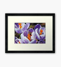 To Bee Happy Framed Print