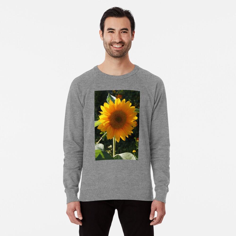 Botanik 1 Leichter Pullover