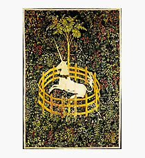 HD The Unicorn in Captivity  (1494 aprox) Photographic Print