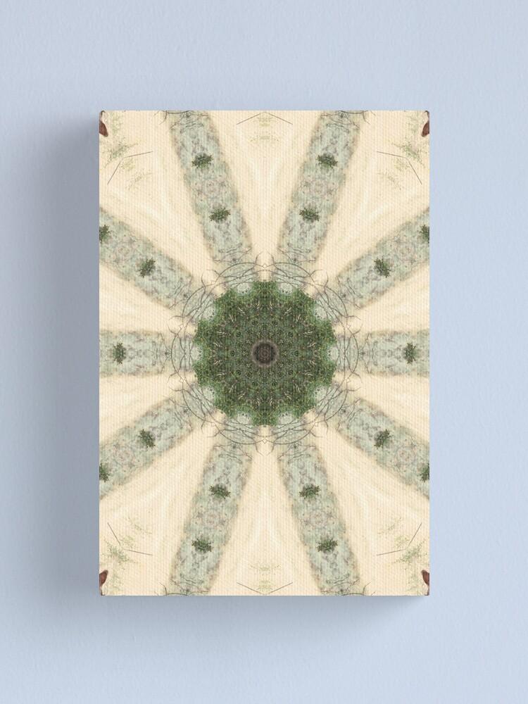 Alternate view of Rustic Pinwheel Canvas Print