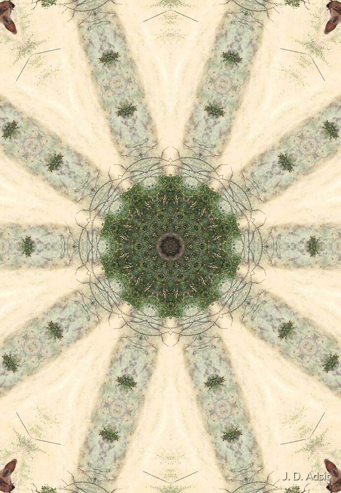 Rustic Pinwheel by J. D. Adsit