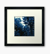 The Trees - Into the Blue Framed Print