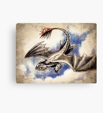 Soarin Toothless Canvas Print