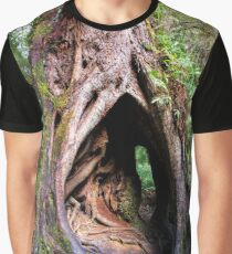 Hollow in the Mountain Ash, Maits Rest, Victoria Graphic T-Shirt