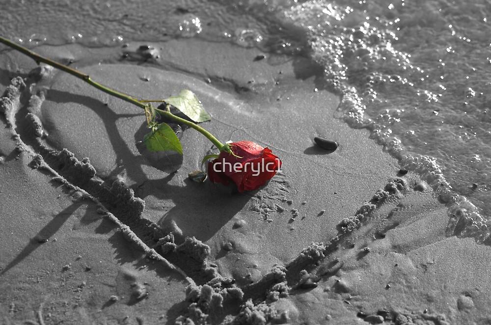 love rose by cherylc1