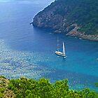 Cala Llonga Bay III by Tom Gomez