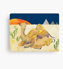 Camels in Egypt Canvas Print