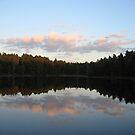 Enchanted Forest - Sweet Dreams by HELUA