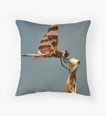 Bug Olympics XVII Throw Pillow