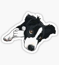 Border-Collie-Dog #5 Sticker