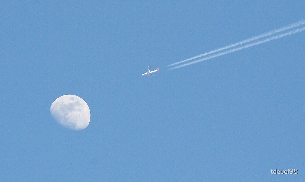 Afternoon flight (1 of 3) by tdeuel98