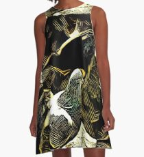 Raven and the Pigeon  A-Line Dress