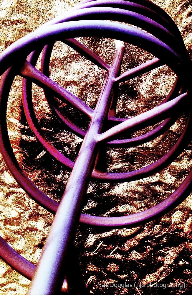 purple spiral by Nat Douglas (njd photography)