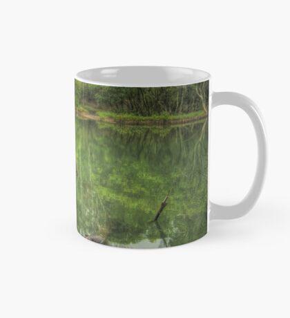 Reflections of Booragul Mug