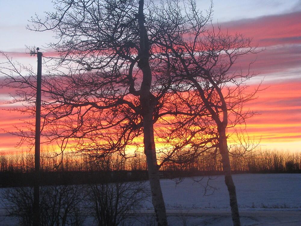Sunset 2 by MERCEDESKENT