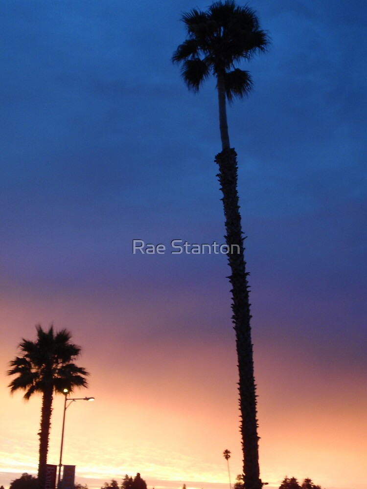 tri colour sky by Rae Stanton