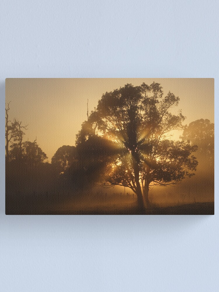 Alternate view of Morning Gold Canvas Print