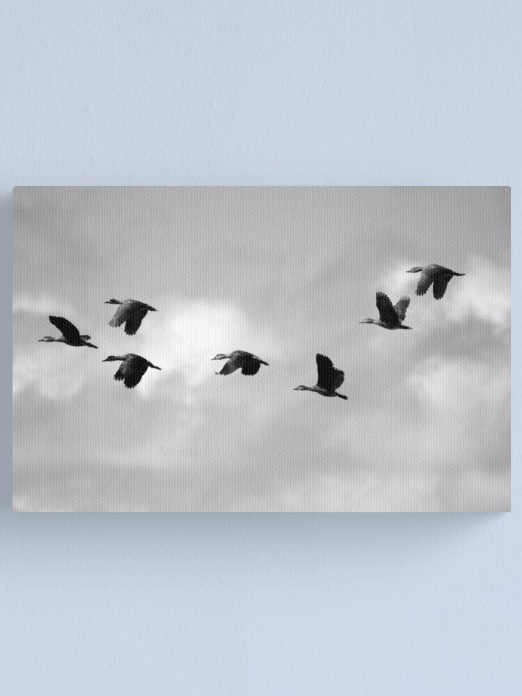 Alternate view of Flight Seven Canvas Print