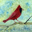 Red Cardinal  by Uni356