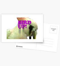 Bird Up Postcards