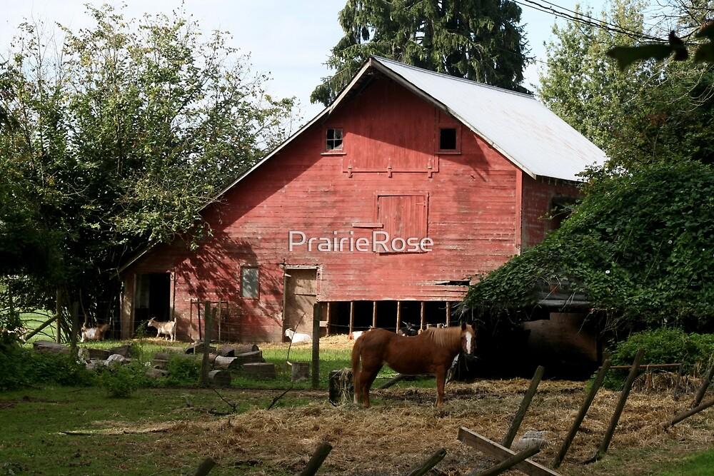 Life on the Farm by PrairieRose
