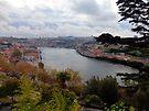 Porto River from the Palacio de Cristal by trish725