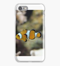 Clown Loach iPhone Case/Skin