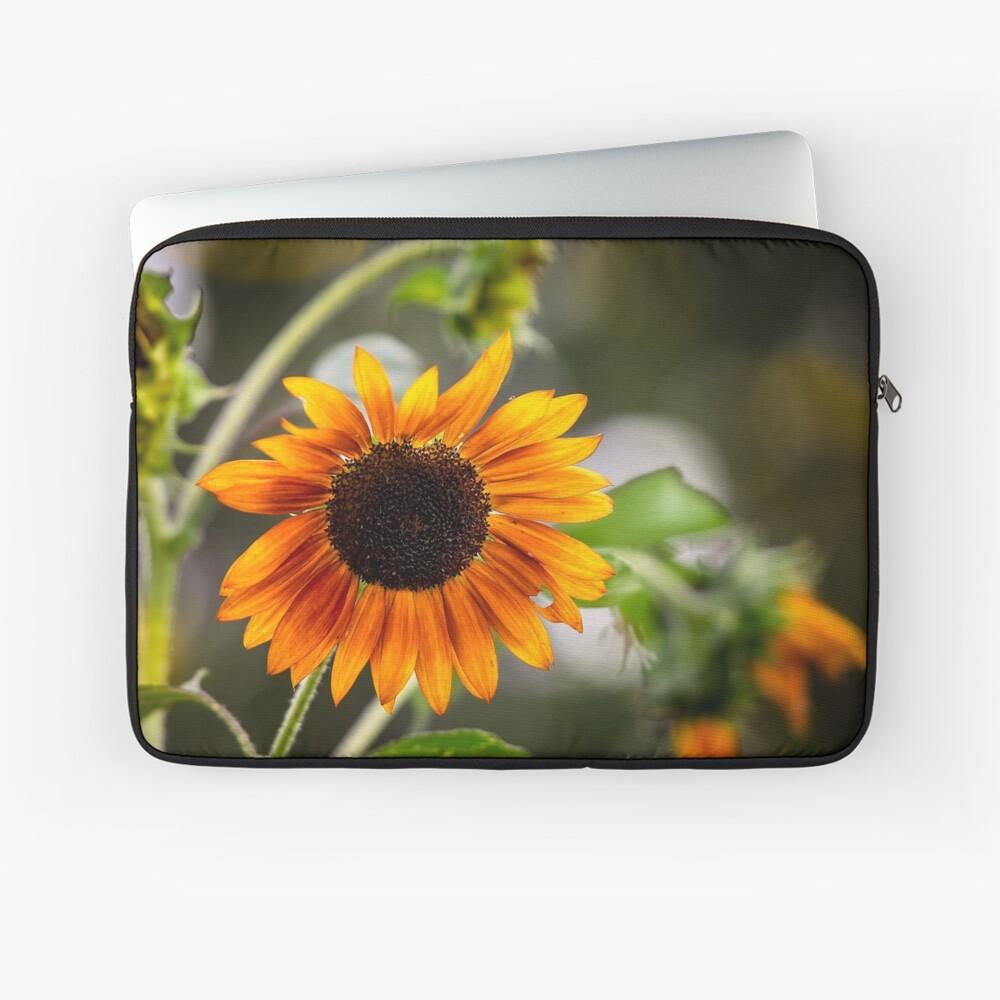 Orange Sonnenblume Laptoptasche