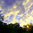 weather by Sandra Hopko